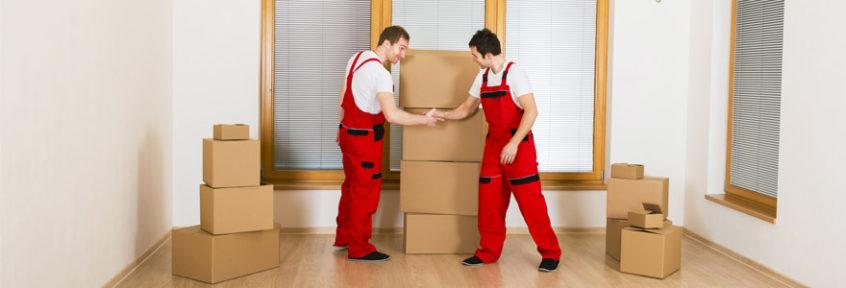 déménagement par professionnels